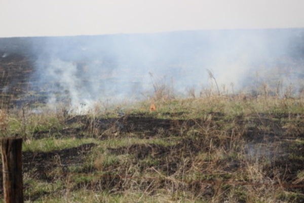 Flint Hills Prescribed Fire Update May 1, 2020