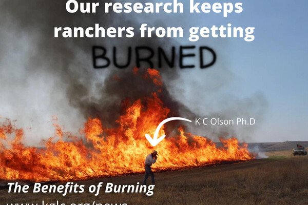 Benefits of Burning #4 of Series